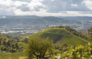 Weinberge Stuttgart, © Nicole Hagemann